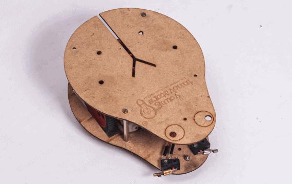 Bug robot(1)