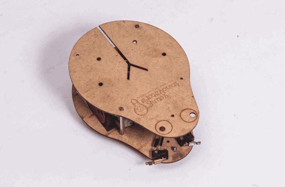 Bug robot(3)